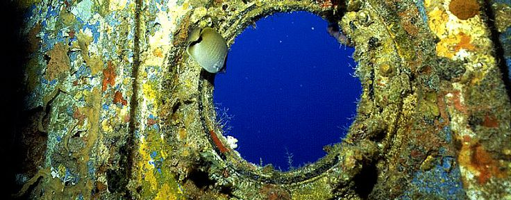 The Florida Keys National Marine Sanctuary contains several decommissioned vessels that were sunk in specific areas for diving or fishing opportunities prior to designation of the sanctuary. This image shows the Thunderbolt, which in 1986, was intentionally sunk in 120 feet of water 4 miles south of Marathon and Key Colony Beach. The ship's superstructure is now home to colorful sponges & corals, providing food & habitat for a variety of sea creatures. Click to get the facts on artificial…