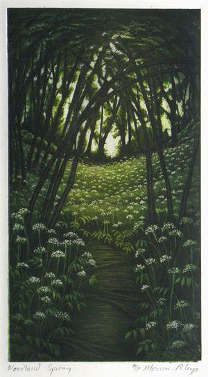Woodland Spring by Morna Rhys