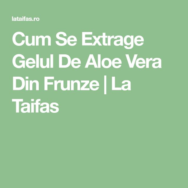 Cum Se Extrage Gelul De Aloe Vera Din Frunze | La Taifas