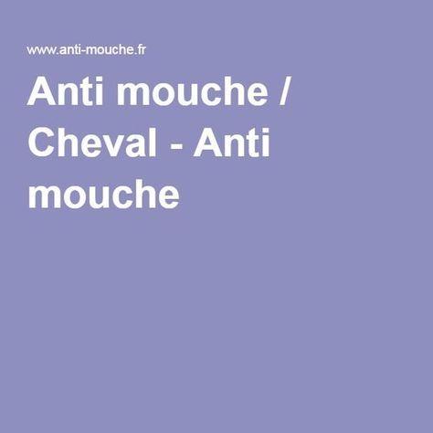 Anti mouche / Cheval - Anti mouche