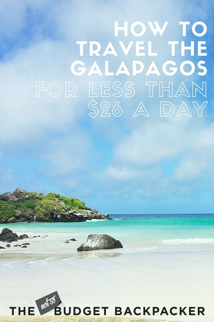 I travelled the Galapagos on a budget of less than $26 per day for an activity-packed three weeks. And it was totally easy! Here's how you can too. // Things to do in the Galapagos, Things to do in the Galapagos Ecuador, Ecuador travel, the Galapagos travel, 48 hours in the Galapagos, Where to go in Ecuador, Things to do in Ecuador, What to do in the Galapagos, What to do in Ecuador