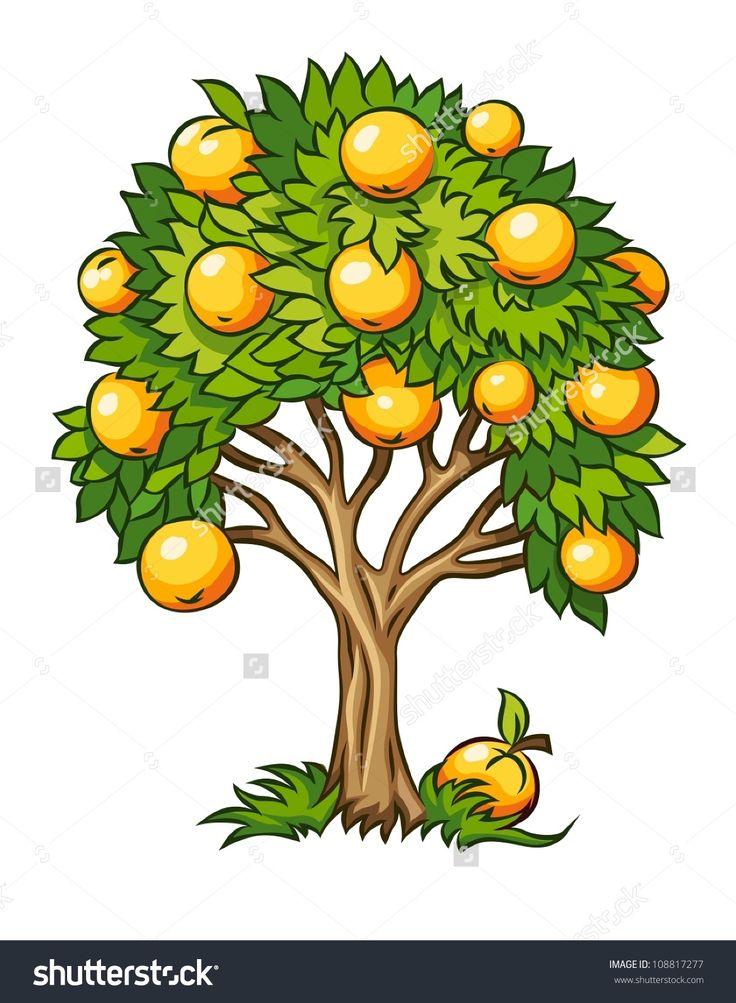 fruit tree vector illustration isolated on white