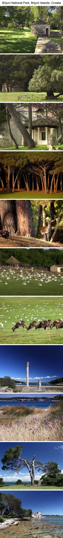 Brijuni National Park, Brijuni Islands, Croatia   Filmed by Marko Vrdoljak for Brijuni National Park