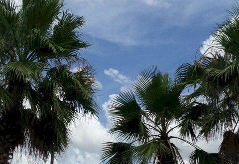 Orlando cloud formations #orlandoweather  Visit: AboutOrlando.com