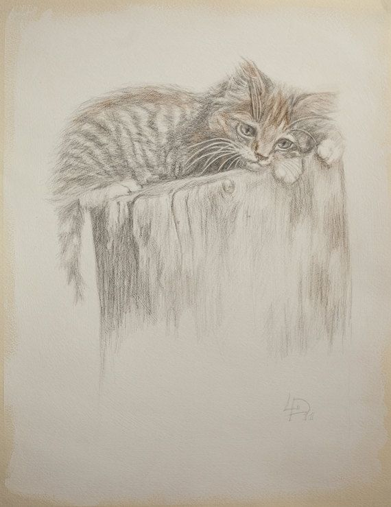 Kitty Original SILVERPOINT Drawing Unique Artwork by myhArt4you