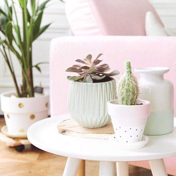 Pink & plants! ✨ #homesweethome #decoration detail