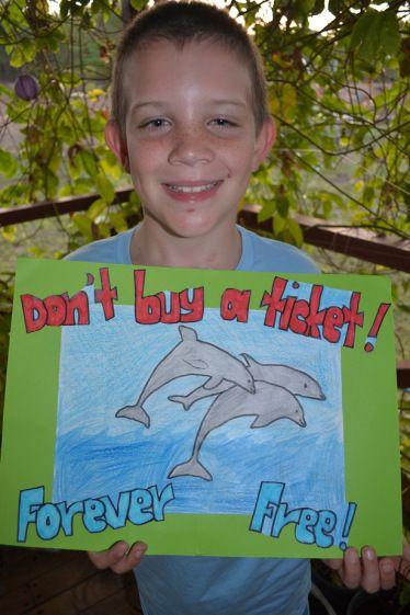 An open letter to Hellen Degeneres. #dolphingproject Harry Morgan. SHARE!!!