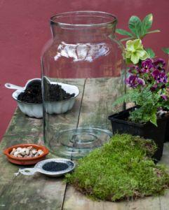 I Terrari sono un bel modo per creare piccoli giardini all'interno della casa, e sono spesso utilizzati per far crescere piante grasse e felci. Realizzarne uno in un vaso di vetro o meglio in un barattolo riciclato, è il modo migliore per portare colore e bellezza nelle vostre case. Avrete bisogno di: vaso di vetro …