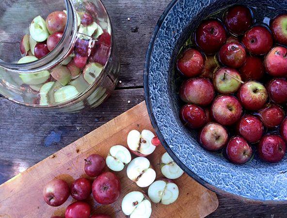 apple for vinegar