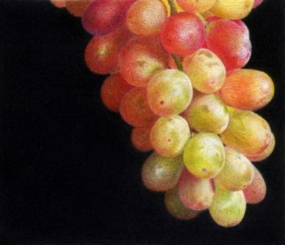 colored_pencil_grapes.jpg (400×343)