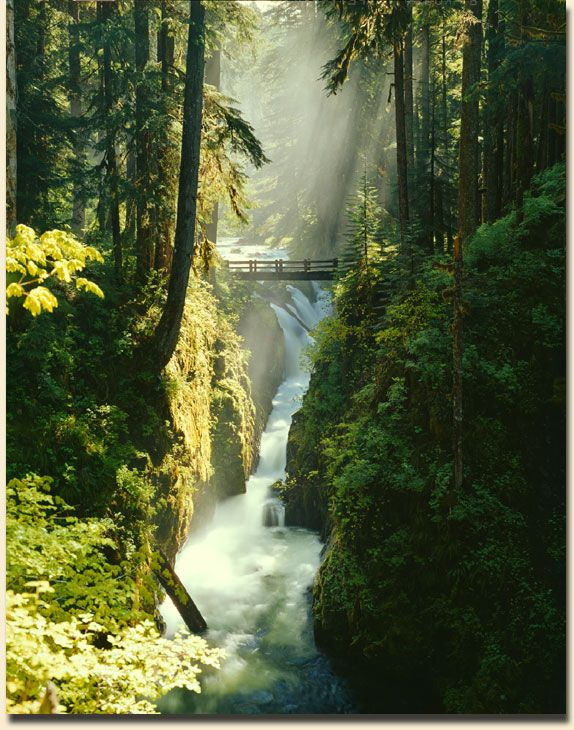 Sol Duc Falls-Olympic Peninsula Washington  I love it there, it was such a beautiful hike!
