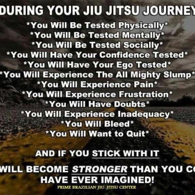 Jiu Jitsu Quotes: 1000+ Images About Jiu Jitsu On Pinterest