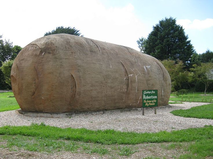 Big Potato in Robertson, NSW
