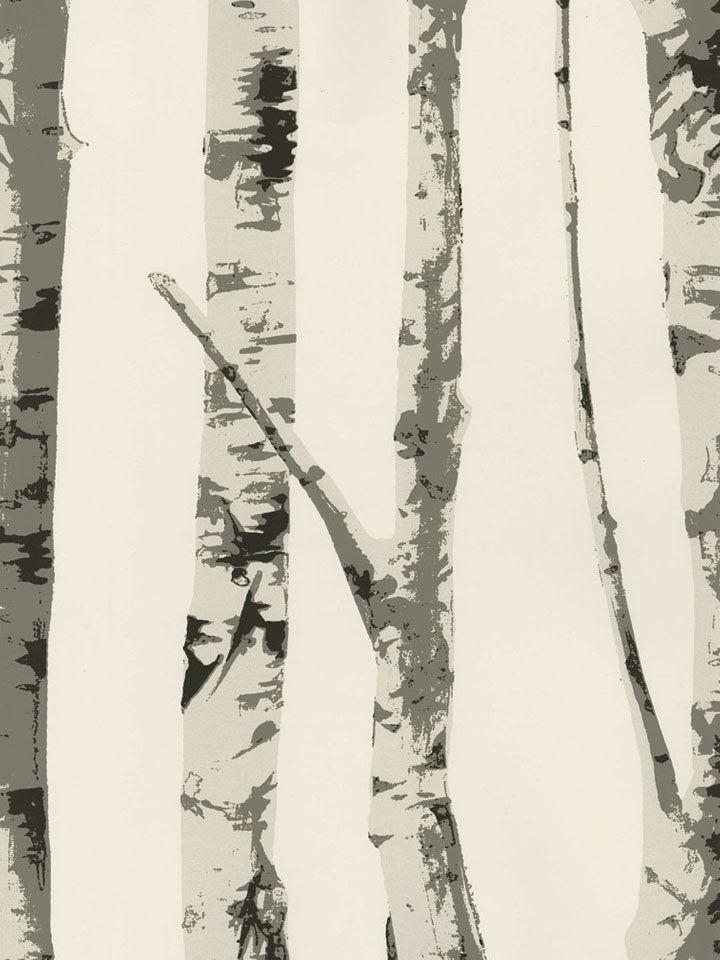 Best 25 Birch Tree Wallpaper Ideas On Pinterest Tree