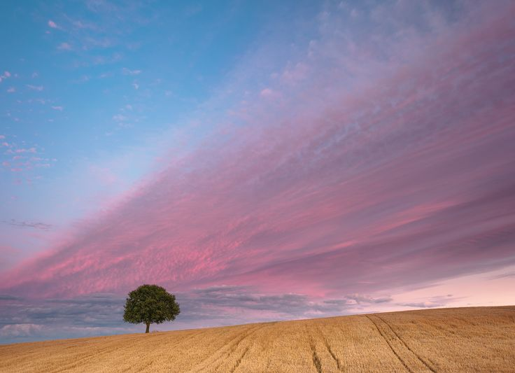 another sunset on planet England by Mirek Galagus on 500px
