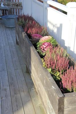 En sån här odlingslåda skulle passa på altanen. Lagom djup för säsongsblommor.