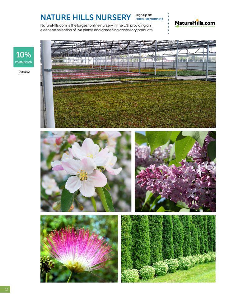 Best 25 Online Nursery Ideas On Pinterest Yoshino Cherry Tree Spring Flowering Trees And