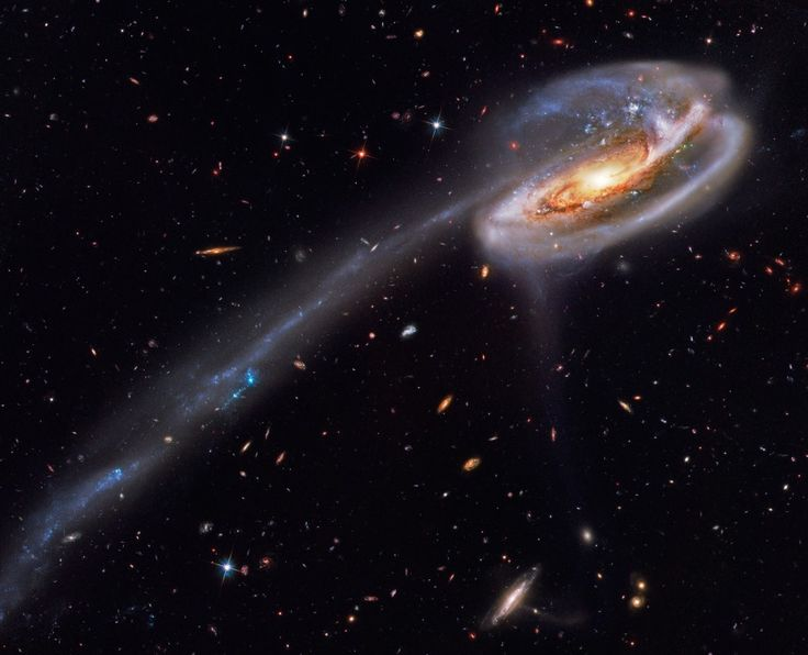 Arp 188 and the Tadpole's Tail   Image Credit: Hubble Legacy Archive, ESA, NASA; Processing - Bill Snyder (Heavens Mirror Observatory)