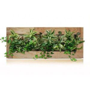 Tableau végétal Alsaka grand modèle toutes couleurs