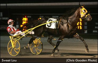 Sweet Lou, fastest two-year-old in harness racing history with a 1:49 Breeders Crown win in 2011, came back with as million dollar season in 2012, Hall of Famer Dave Palone driving for trainer Ron Burke