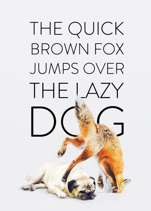 the quick brown fox jumps over the lazy dog handwriting analysis