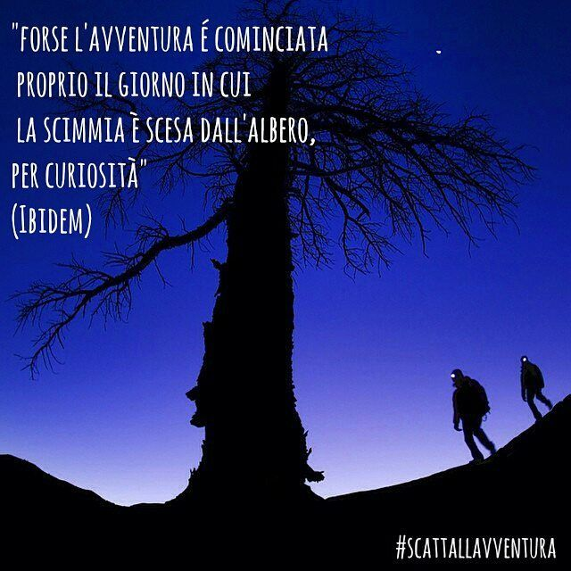 """Forse l'avventura è cominciata proprio il giorno in cui la scimmia è scesa dall'albero per curiosità"" (Ibidem)  Hashtag #scattallavventura  #avventura #naturelovers #natureshots #natura #outdoors #outdoor #nature #adventures #adventure #photographers #photograph #photo #photooftheday #picoftheday #instafrasi #frasi #citazioniitaliane #citazioni #citazionifamose #quotes #albero #tree #scimmia #curiositá #curiosity  Photo by @coreyrichproductions  With @matteoratini @redblond_marydimauro"