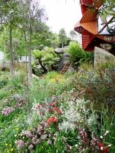 Chelsea Flower show 2013. Trailfinders  Australian Garden - Best in Show