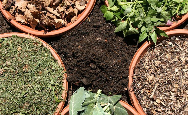 Kompostieren leicht gemacht: So wird der Garten- und Küchenabfall richtig geschichtet und gelagert. Am Ende haben Sie Bio-Dünger und Humus für lau.