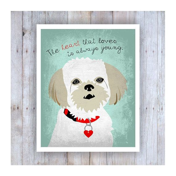 Hey, I found this really awesome Etsy listing at https://www.etsy.com/listing/211535701/shih-tzu-art-shih-tzu-dog-shih-tzu-print