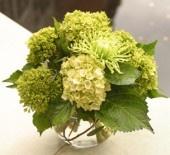 Lovely #green flower arrangement in silver bowl.