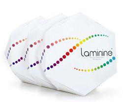 Laminine - The scientific breakthrough that's SAVING lives every day... http://EggOfLife.com/RoadToWellness