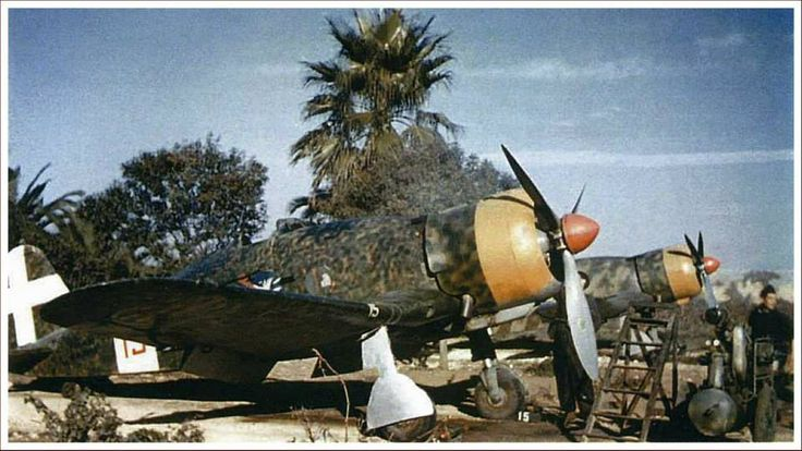 Fiat G.50 - Note the two different camouflage schemes.