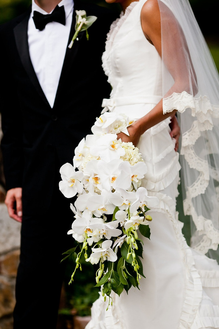Lovely cascading orchid bouquet! Photography by bamberphotography.net, Floral Design by http://facebook.com/pages/Social-Graces-Floral-Design/149630148389089