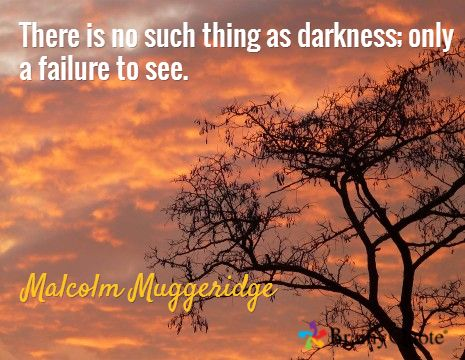 There is no such thing as darkness; only a failure to see. / Malcolm Muggeridge