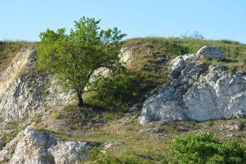 """Birkás Krisztina Élet a sziklák között"""" Képemet Iszkán készítettem. Több kép Krisztinától: http://picasaweb.com/birkask"""