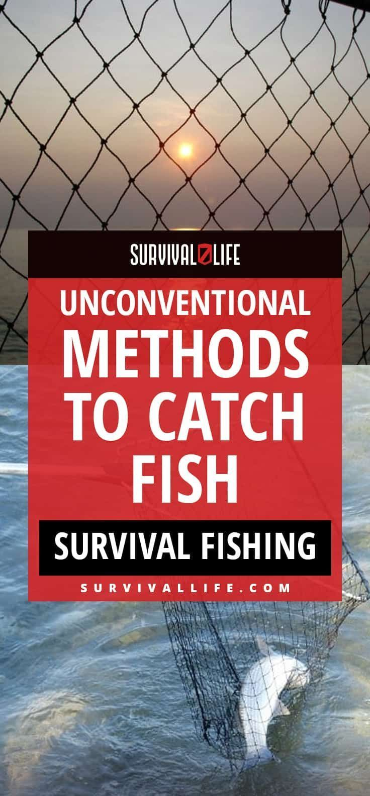Survival Fishing | Unconventional Methods To Catch Fish #Prepper #SurvivalFood