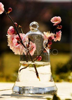 Transparent Fuchsia Shaped Glass Made Aquaculture Vase