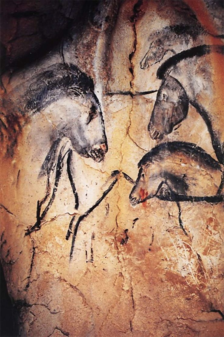 One of the panels in the cave, with horses painted facing each other, overlying an earlier outline of a horse.   Chauvet Cave