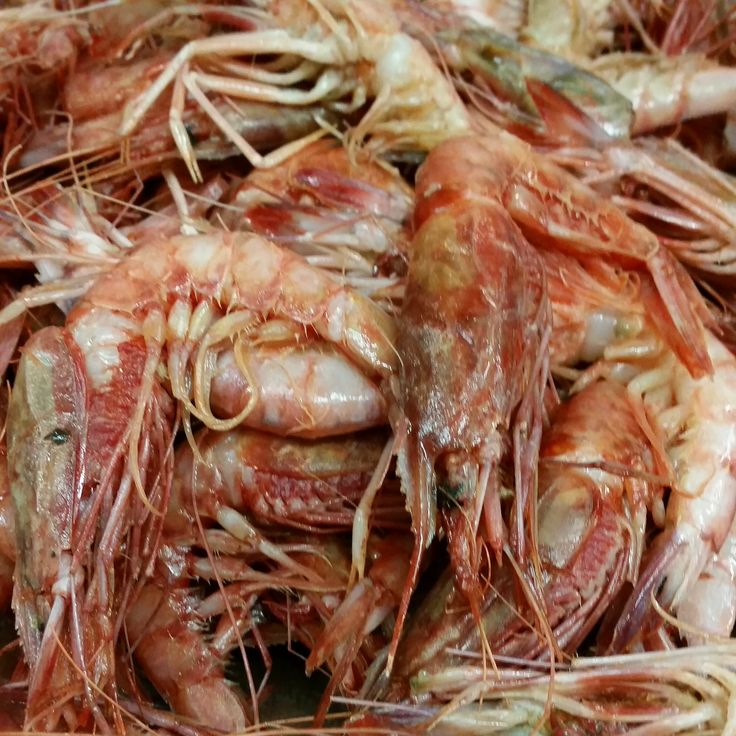 Jumbo Karides  Rez.Tel: 0 (224) 549 23 03 / www.anadolulezzet...   #fish #balık #ramazan #iftar #bursa #bursaturkey #bursablogger #bursamagazin #bursanilüfer #bursagece #yemek #dünyamutfağı #food #breakfast #delicious #eating #fresh #tasty #anadoluetlokantası #anadoluet #anadolulezzeti  #ahtapot  #fava  #çiroz  #hamsi  #sardalya  #karides