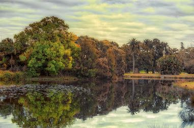 Google+ Centennial Park, Sydney, Australia
