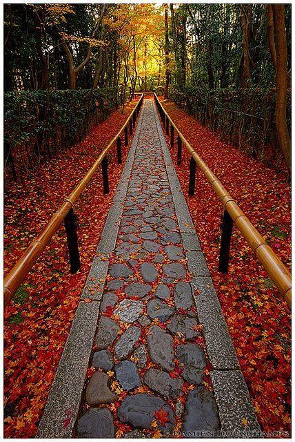 The End Of Autumn, Koto-in, Sub-temple Of Daitoku-ji, Kyoto, Japan