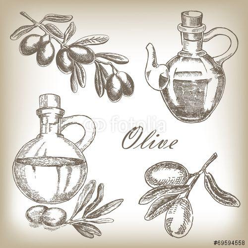 Вектор: Hand drawn olive set. Vector illustration in sketch style