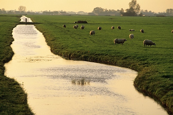 Dutch countryside. By Martin Kers Photography