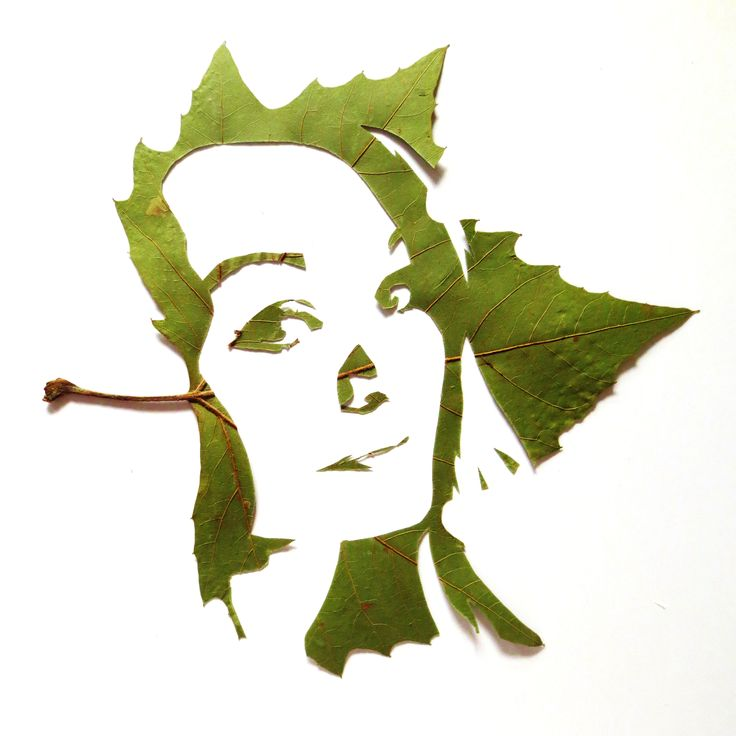 Fine Oddity - Facial Portraits, made from hand cut leaves