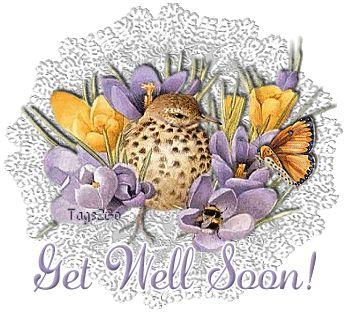 animated get well soon | http://www.desiglitters.com/get-well-soon/get-well-with-butterflies-2/