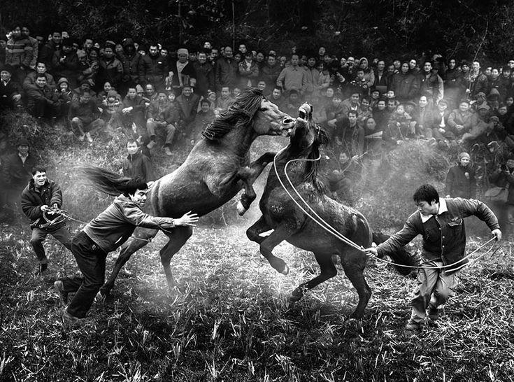 "China National Award: ""Horse fighting in Rongshui, Guangxi"" by Ngai-bun Wong, China, 2nd Place, 2014 Sony World Photography Awards"