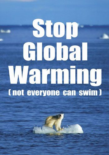 stop global warming essays