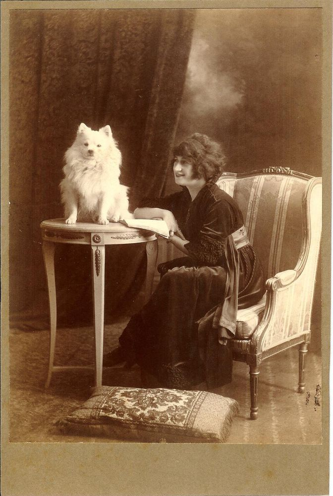 Lady in armchair n SPITZ pomeranian dog on table antique CABINET CARD photo