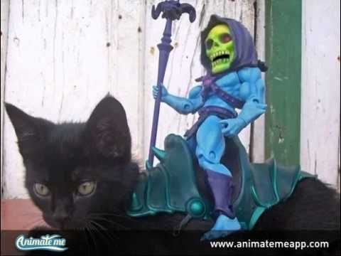 Animated Skelator riding a cat!  Create your own talking pets, talking animals, and photo animations with the FREE Animate Me - Talking Photos app for iPhone and iPad. It won't be free for long, so download today! http://www.animatemeapp.com/get