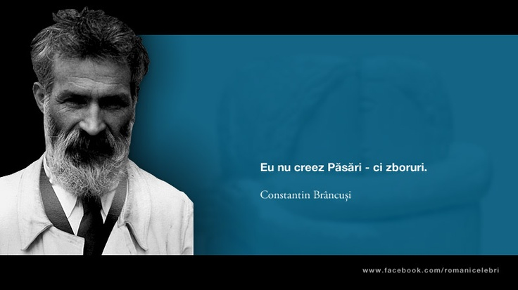 Eu nu creez Pasari - ci zboruri. -- Constantin Brancusi
